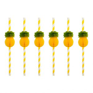 set van 12 rietjes straw annanas pineapple
