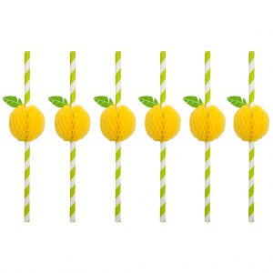 rietjes in set van 12 straw citroen sunnylife mirthecastello