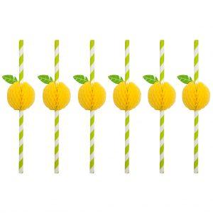 rietjes in set van 12 straw citroen sunnylife mirthecastello