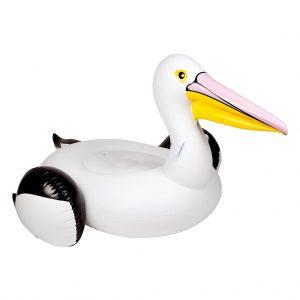 pelikaan vogel float zwembad zee drijven cool