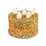 taart cake verjaardag feestje party kids kinderen partijtje kaarsje seenhoonr unicorn